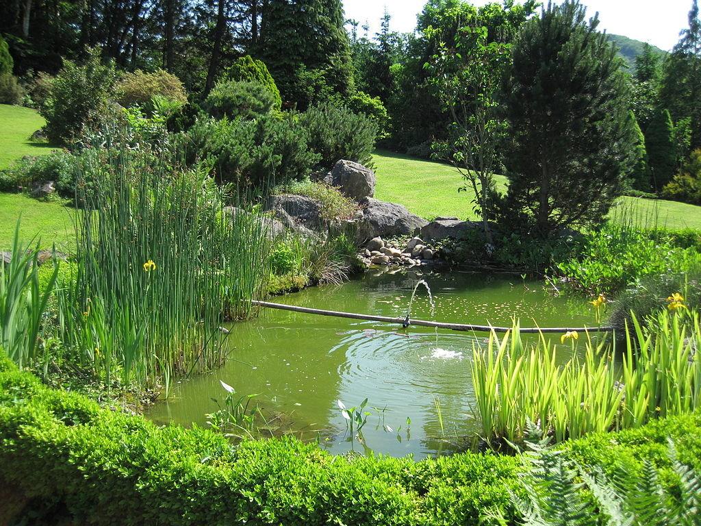 Bache Epdm Abri Jardin Bois France