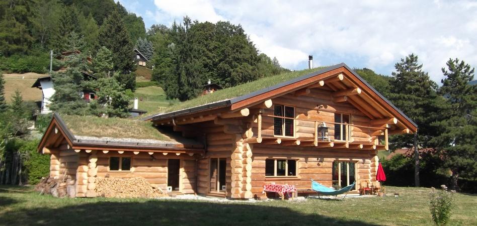 Construire Un Chalet Habitable - abri jardin bois France